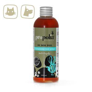 BeeYes Propolia pies&kot szampon